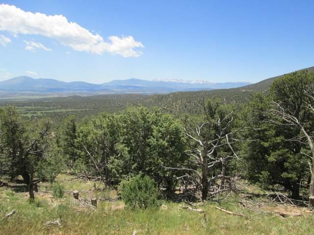6 Milligan Ranch, Gardner, CO 81040 (MLS #21-566) :: Bachman & Associates