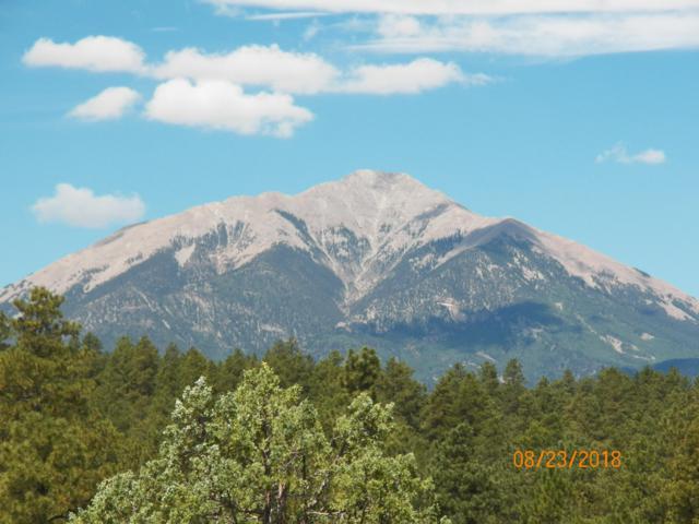 TBD Spirit Mountain Dr #16, Aguilar, CO 81020 (MLS #16-343) :: Big Frontier Group of Bachman & Associates