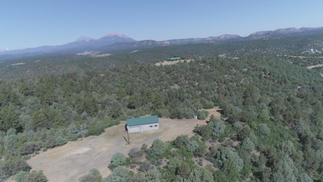 24575 Parsil Canyon Road, Aguilar, CO 81020 (MLS #17-838) :: Big Frontier Group of Bachman & Associates