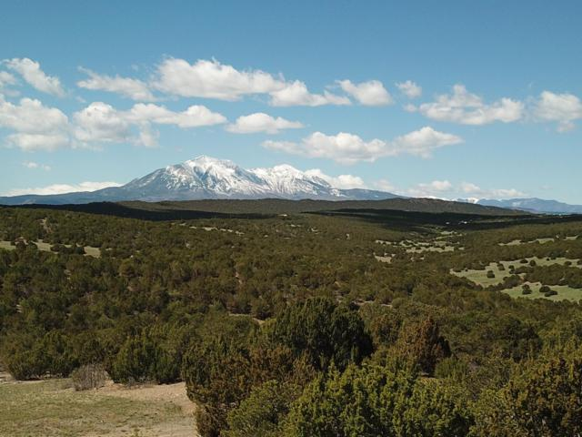 TBD Cherokee Lane Parcel 111, Walsenburg, CO 81089 (MLS #18-1272) :: Big Frontier Group of Bachman & Associates