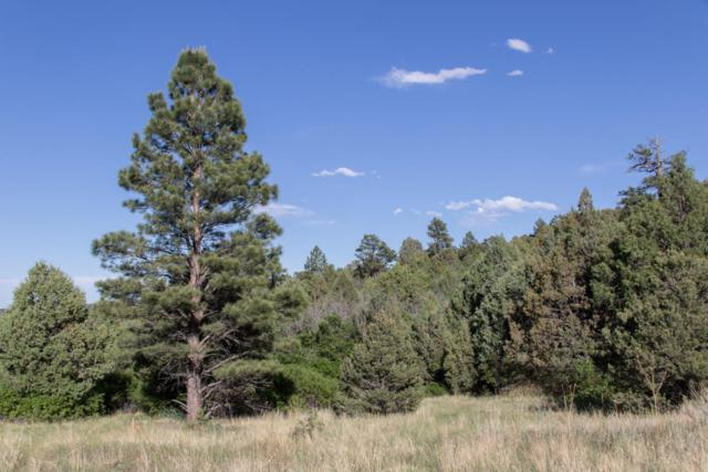 TBD Steffie Drive, Aguilar, CO 81020 (MLS #18-28) :: Sarah Manshel of Southern Colorado Realty
