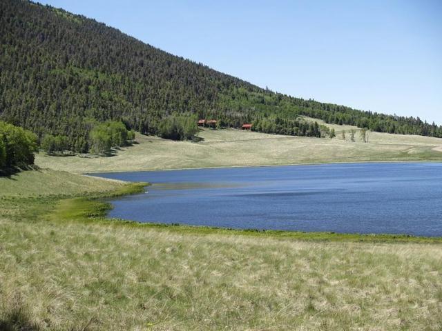 2354 Benton Place, Ft. Garland, CO 81133 (MLS #18-344) :: Sarah Manshel of Southern Colorado Realty