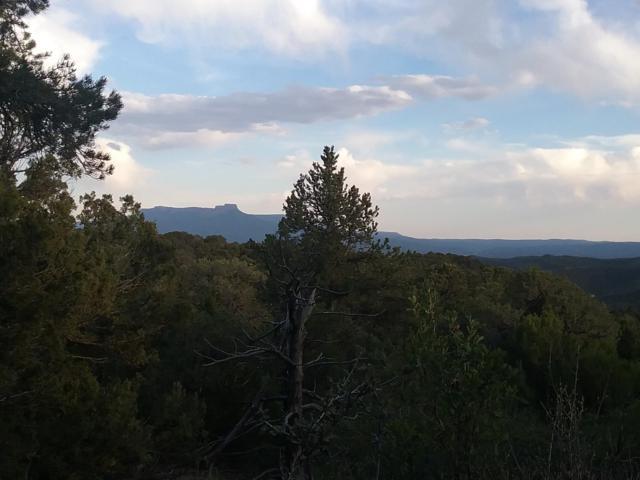 TBD Fishers Peak Ranch Lot B3, Trinidad, CO 81082 (MLS #18-668) :: Big Frontier Group of Bachman & Associates