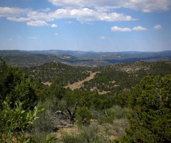 Rancho La Garita Filing 9 Lot 1048, Weston, CO 81091 (MLS #18-798) :: Big Frontier Group of Bachman & Associates