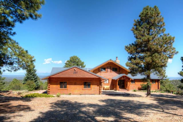 33441 Mountain, Trinidad, CO 81082 (MLS #18-834) :: Sarah Manshel of Southern Colorado Realty