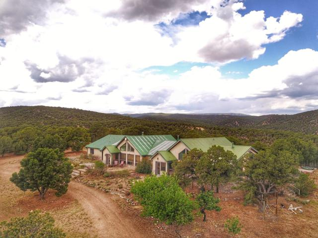 1006 County Rd 634.2, Gardner, CO 81040 (MLS #18-941) :: Sarah Manshel of Southern Colorado Realty