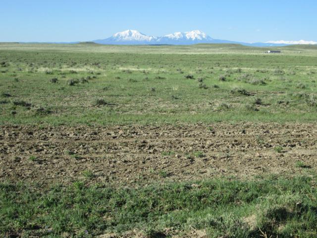 48 Colorado Buffalo Ranch, Walsenburg, CO 81089 (MLS #19-453) :: Big Frontier Group of Bachman & Associates