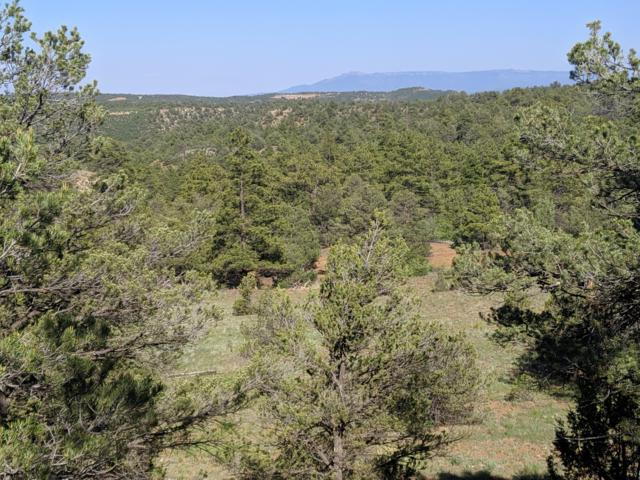 Rancho La Garita, 1035/1036, Weston, CO 81091 (MLS #19-5) :: Big Frontier Group of Bachman & Associates