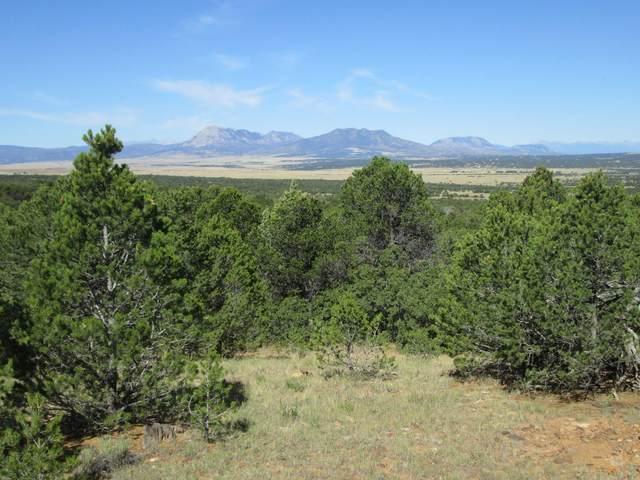 142 River Ridge Ranch Phase  #6, Walsenburg, CO 81089 (MLS #19-970) :: Bachman & Associates