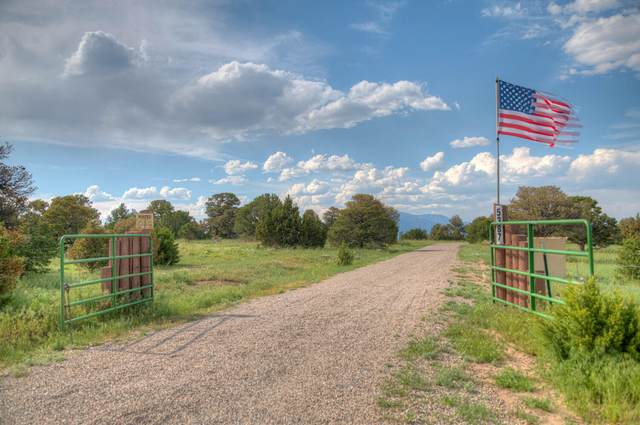 5387 County  Rd 521, Walsenburg, CO 81089 (MLS #21-113) :: Bachman & Associates