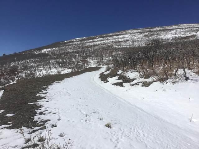 32 Raspberry Mt. Ranch Filing #3, La Veta, CO 81055 (MLS #21-203) :: Bachman & Associates