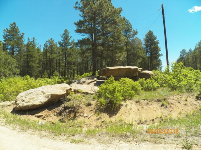 TBD Elk Trail/Black Bear Road #39, Aguilar, CO 81020 (MLS #15-423) :: Big Frontier Group of Bachman & Associates