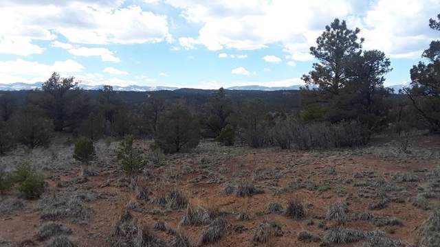 TBD Rancho Lagarita Filing 9 Lot 10, Weston, CO 81091 (MLS #15-962) :: Big Frontier Group of Bachman & Associates