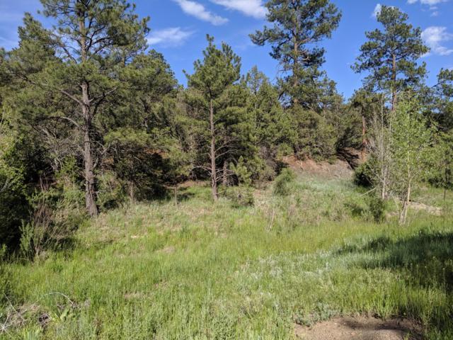Colorado Canyon Tract 7, Trinidad, CO 81082 (MLS #17-1163) :: Big Frontier Group of Bachman & Associates