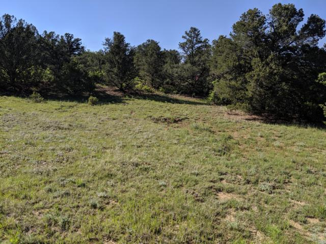 Rancho La Garita Filing 9 Lot 1048, Weston, CO 81091 (MLS #18-798) :: Big Frontier Group of Bachman & Associates