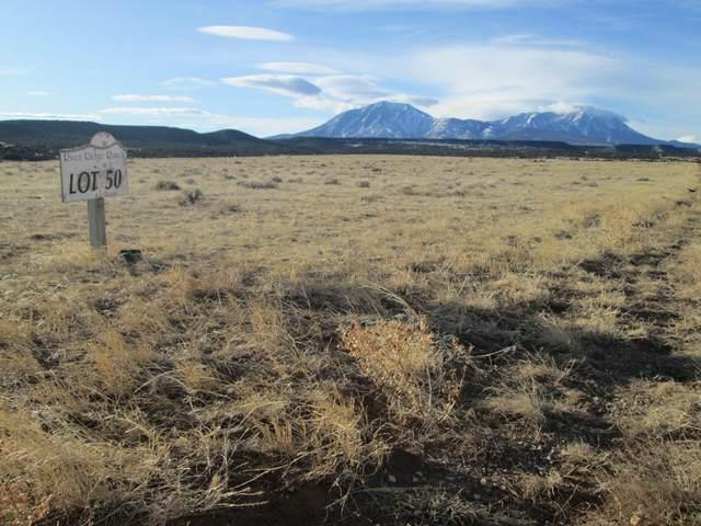 50 Phase 2 River Ridge Ranch, Walsenburg, CO 81089 (MLS #20-46) :: Bachman & Associates