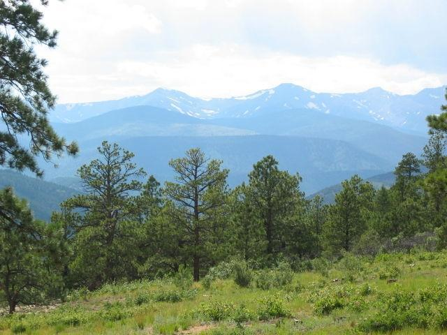 North Fork Properties Lot 10, Weston, CO 81091 (MLS #15-387) :: Sarah Manshel of Southern Colorado Realty