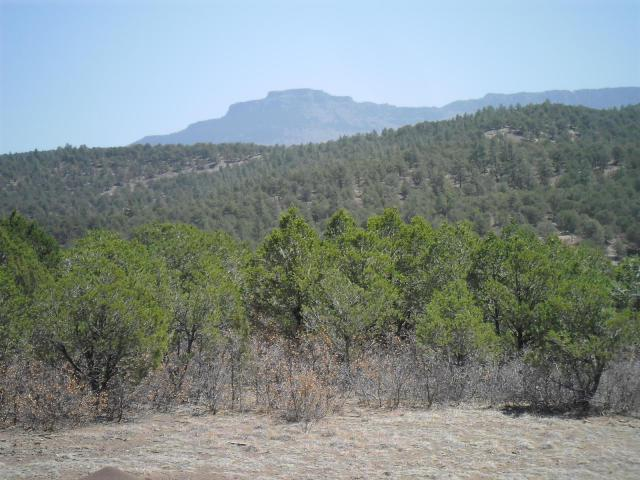 7511 County Road 53.1 Track 2, Trinidad, CO 81082 (MLS #15-871) :: Sarah Manshel of Southern Colorado Realty