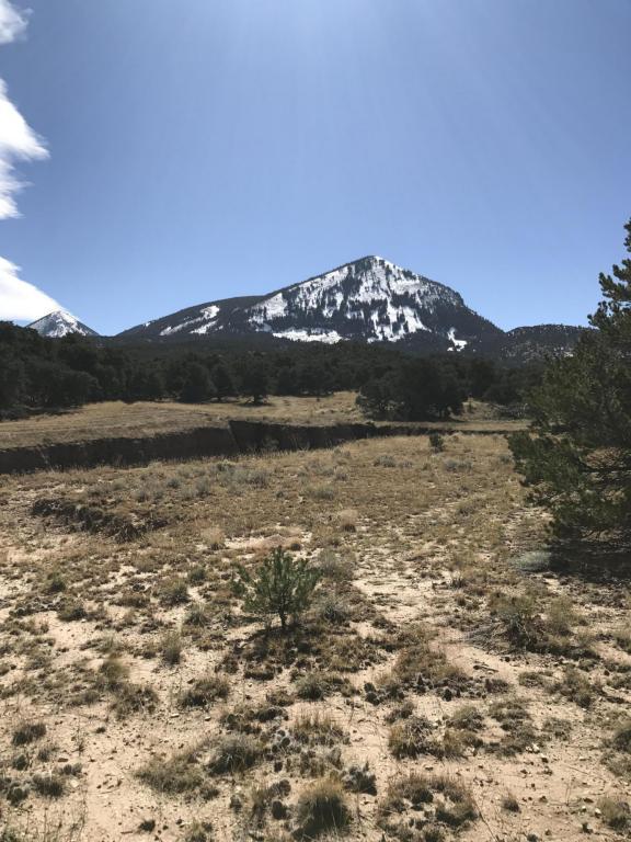Colorado Land & Grazing #177, Gardner, CO 81089 (MLS #17-1108) :: Sarah Manshel of Southern Colorado Realty