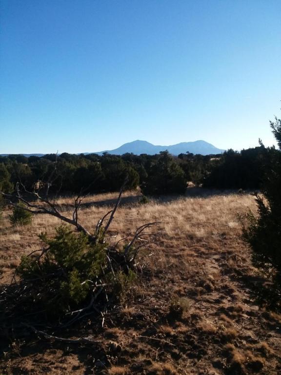 Rio Cucharas Phase III #753, Walsenburg, CO 81089 (MLS #17-1262) :: Sarah Manshel of Southern Colorado Realty