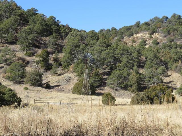 1 County Rd 67.3, Jansen, CO 81082 (MLS #17-1282) :: Sarah Manshel of Southern Colorado Realty