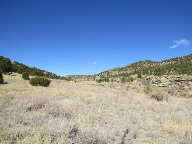 54 Six Point Dr, Trinidad, CO 81082 (MLS #18-174) :: Sarah Manshel of Southern Colorado Realty