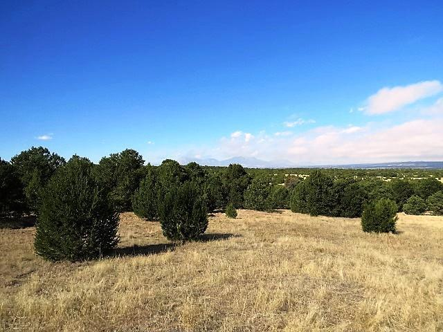 98 River Ridge Ranch, Walsenburg, CO  (MLS #18-209) :: Sarah Manshel of Southern Colorado Realty
