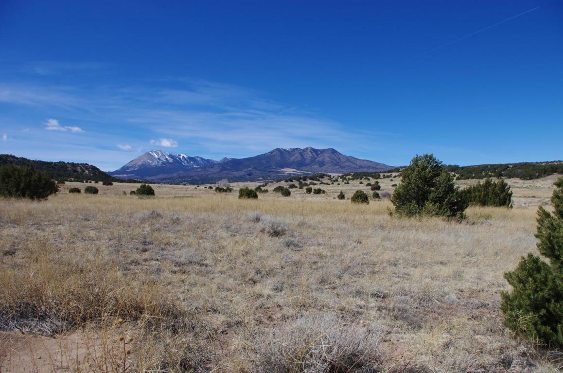 Lot 65 Navajo Ranch Resorts #1 - Photo 1