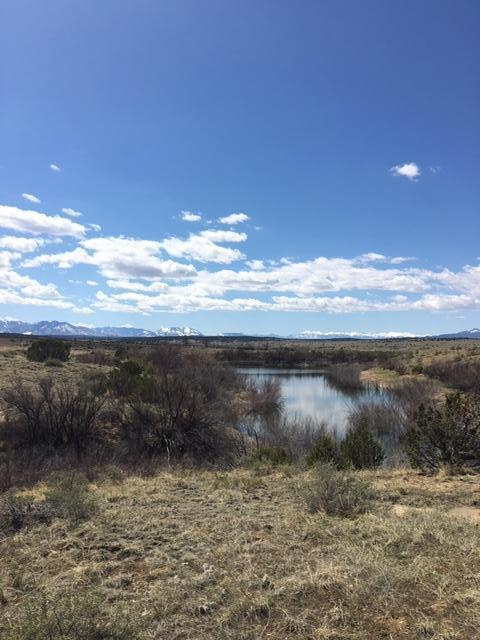 BLOCK 6 Cuerno Verde #16, Walsenburg, CO 81089 (MLS #18-331) :: Sarah Manshel of Southern Colorado Realty