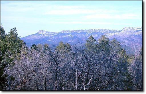33043 Trail Ridge - Photo 1