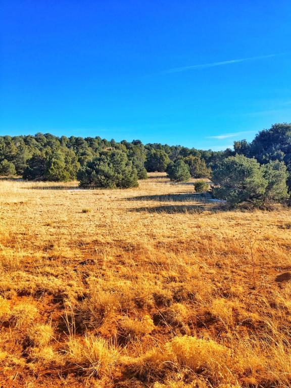 Lot 140 River Ridge Ranch Phase 6, Walsenburg, CO 81089 (MLS #18-75) :: Sarah Manshel of Southern Colorado Realty