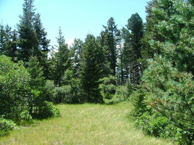 Lot 36 Tres Valles West, LaVeta, CO  (MLS #18-928) :: Sarah Manshel of Southern Colorado Realty