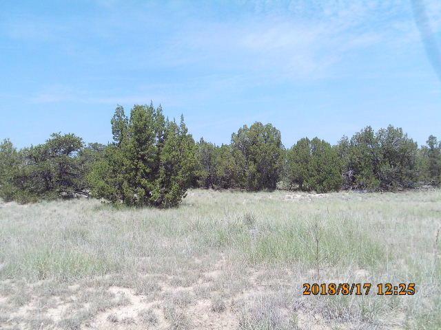 NWNE Las Animas Ranch, Trinidad, CO 81082 (MLS #18-965) :: Sarah Manshel of Southern Colorado Realty