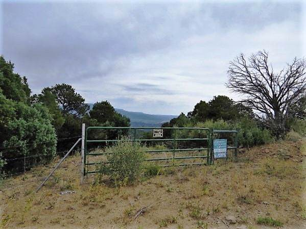 17000 County Rd 69.8, Trinidad, CO 81082 (MLS #19-1113) :: Big Frontier Group of Bachman & Associates
