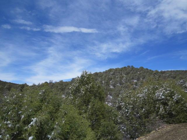 B4 Bear Canyon, Trinidad, CO 81082 (MLS #19-340) :: Big Frontier Group of Bachman & Associates