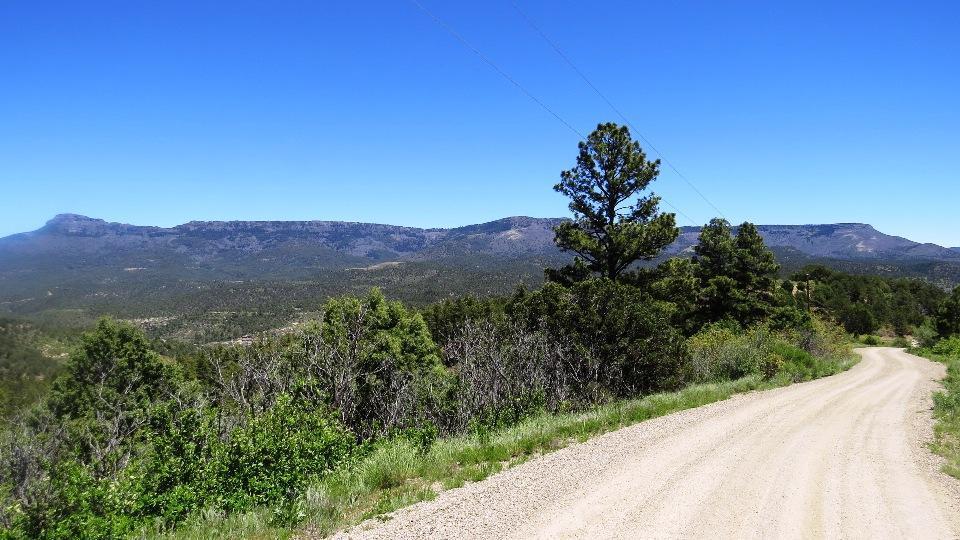 34305 Turkey Creek Lane - Photo 1