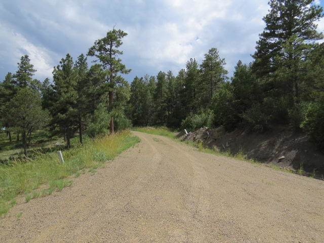 33098 Hidden Meadow Lane, Trinidad, CO 81082 (MLS #19-898) :: Big Frontier Group of Bachman & Associates