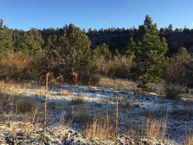 14030 Pando Canyon Breaks 5 And 7, Weston, CO 81091 (MLS #20-1169) :: Bachman & Associates