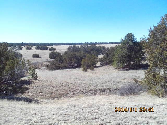 47 Pinon Canyon Ranch, Thatcher, CO 81082 (MLS #20-213) :: Bachman & Associates