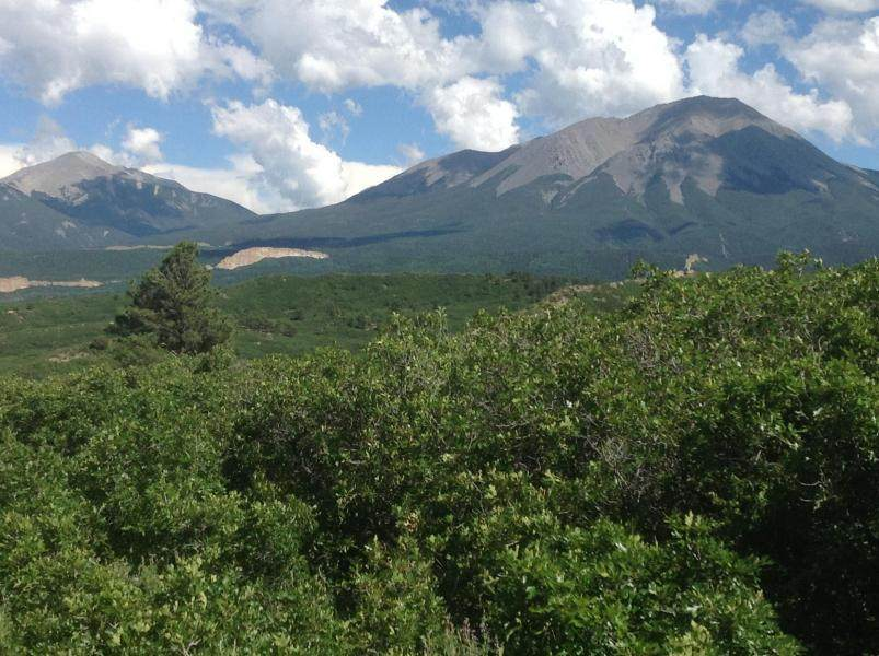 Lot 13 Piney Ridge Ranch - Photo 1