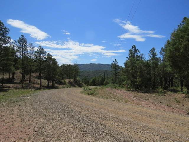 36515 Alpine Meadows Drive, Trinidad, CO 81082 (MLS #20-707) :: Bachman & Associates