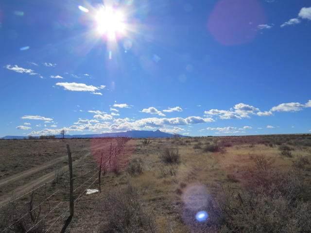 20027 Sunrise Trail Rd, Trinidad, CO 81082 (MLS #20-959) :: Bachman & Associates