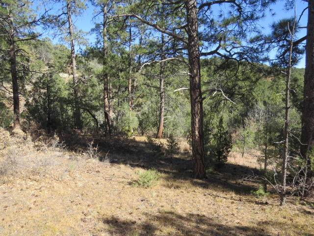 Lot 11 County Rd 67.3 - Photo 1