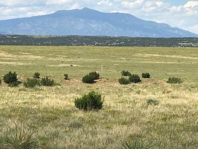 LOT 56 River Ridge Ranch #56, Walsenburg, CO 81089 (MLS #21-137) :: Bachman & Associates