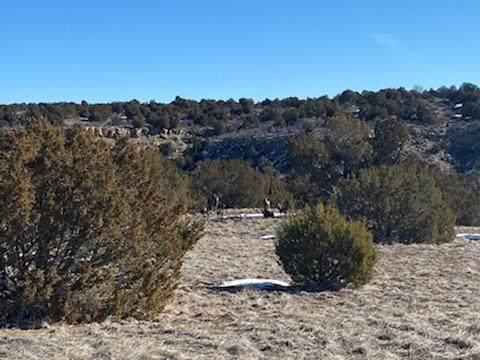 Lot 18 Apache Creek Ranch, Walsenburg, CO  (MLS #21-230) :: Bachman & Associates