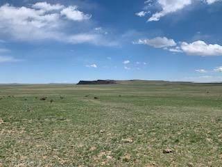Lot 262 Colorado Land & Livestock Unit F, Walsenburg, CO  (MLS #21-421) :: Bachman & Associates