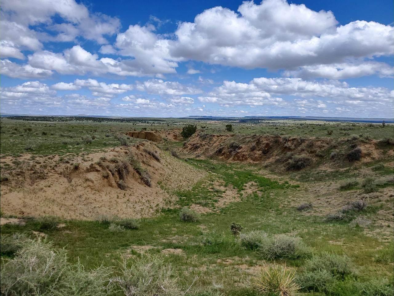 LOT 219 Turkey Ridge Ranch #7 - Photo 1