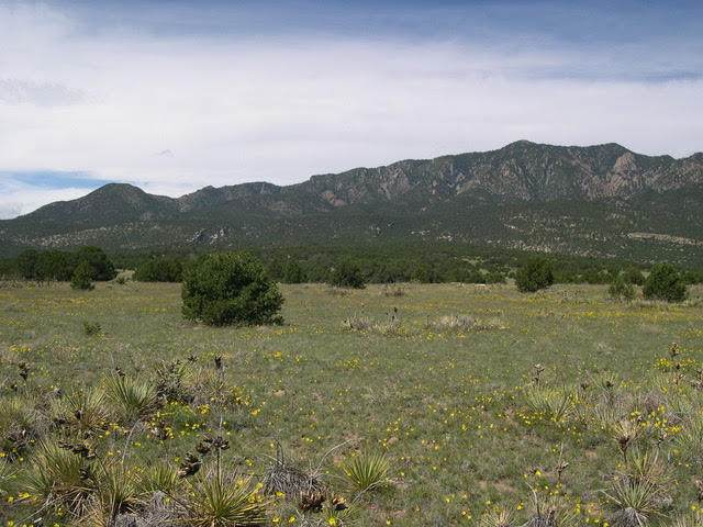 Lot 137 Cl & L Ranch - Photo 1