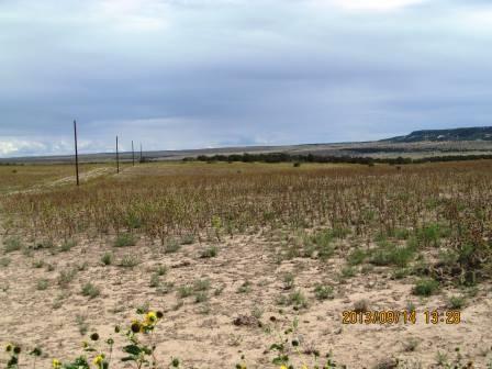 Lot 65 Ghost River Ranch, Walsenburg, CO 81089 (MLS #15-124) :: Sarah Manshel of Southern Colorado Realty