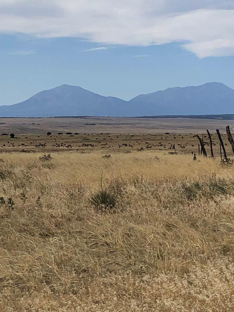 123 G Colorado Land And Livestock - Photo 1